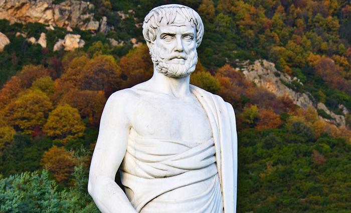 aristotle 105929516