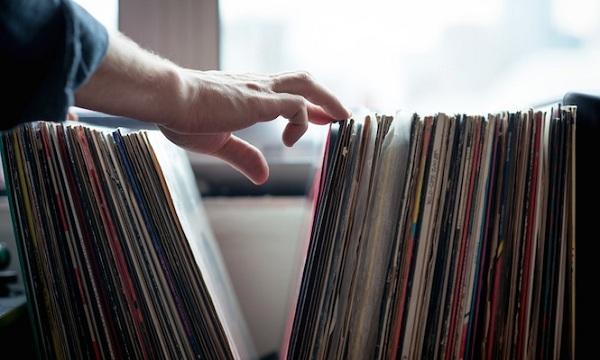 vinyl 324564